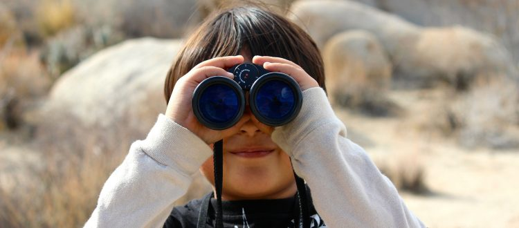 Binocular Vision: Disorders and Treatment